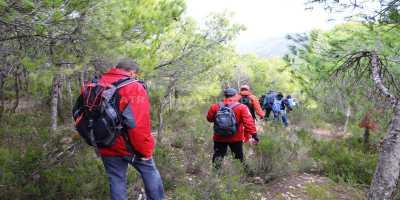 Circuit randonnée Djebel Ballouta _ randonneur dans la foret